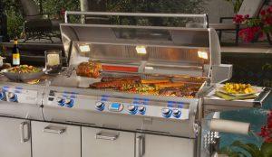 echelon portable grill